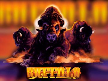 Buffalo Pokie